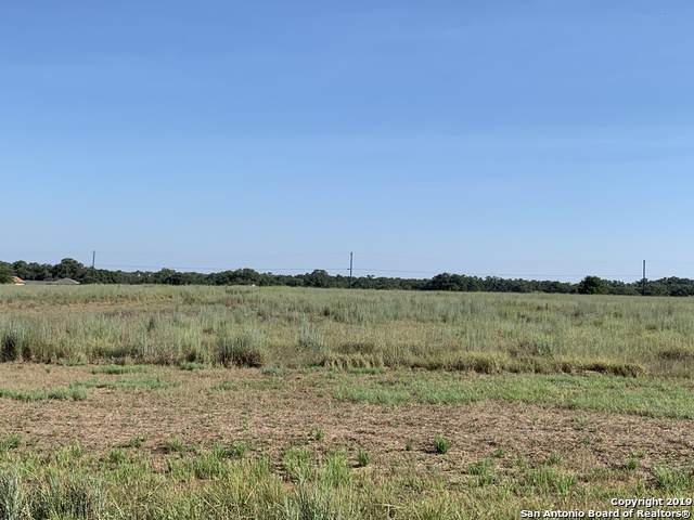 183 Stallion Trail, Natalia, TX 78059 (MLS #1409266) :: BHGRE HomeCity