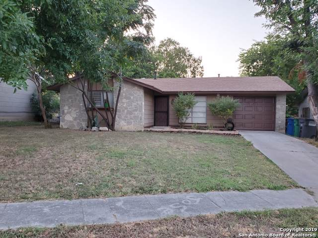 8511 Timber Wolf Dr, San Antonio, TX 78242 (MLS #1409274) :: Alexis Weigand Real Estate Group