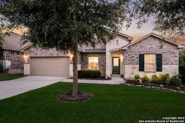28927 Gooseberry, San Antonio, TX 78260 (MLS #1409358) :: BHGRE HomeCity