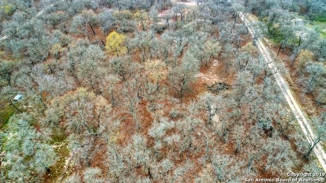 545 LOT 3 Enchanted Oak Dr, La Vernia, TX 78121 (MLS #1409372) :: ForSaleSanAntonioHomes.com