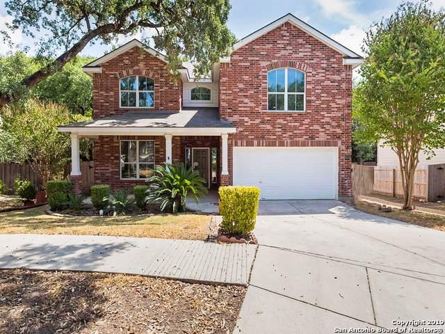 17222 Wesco Loop, San Antonio, TX 78247 (MLS #1409455) :: BHGRE HomeCity