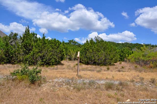 1727 Slumber Pass, San Antonio, TX 78260 (MLS #1409496) :: Exquisite Properties, LLC