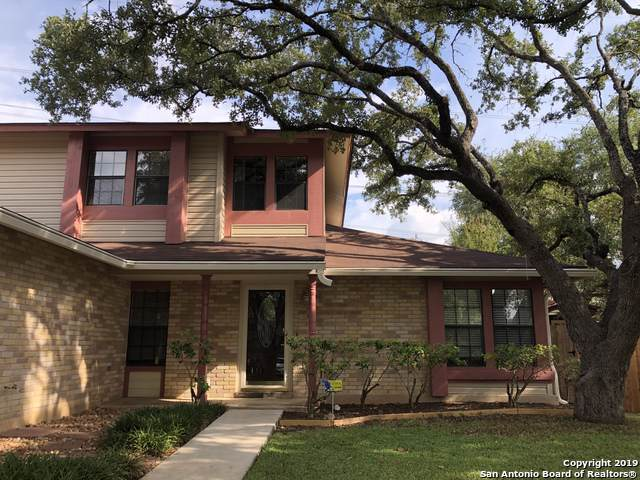 14114 Kint Circle St, San Antonio, TX 78247 (MLS #1409562) :: Santos and Sandberg