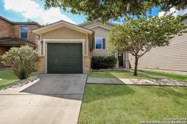 5546 Spring Walk, San Antonio, TX 78247 (MLS #1409710) :: BHGRE HomeCity