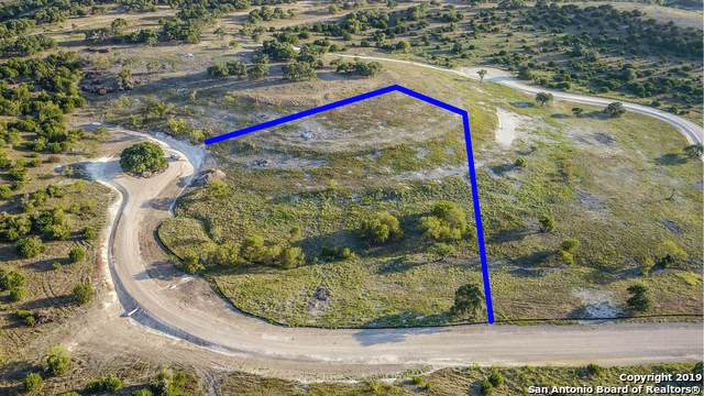TBD  LOT 14 Rr 1623, Blanco, TX 78606 (MLS #1410006) :: Alexis Weigand Real Estate Group