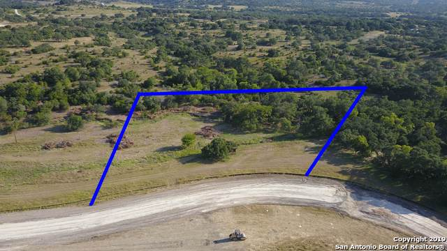 TBD  LOT 41 Rr 1623, Blanco, TX 78606 (#1410013) :: The Perry Henderson Group at Berkshire Hathaway Texas Realty