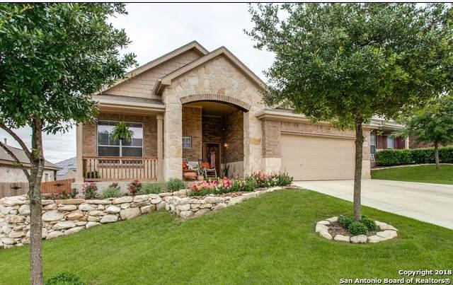 3615 Sweet Olive, San Antonio, TX 78261 (MLS #1410024) :: BHGRE HomeCity