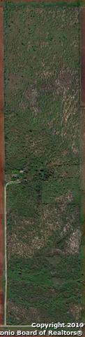 3034 Atascosa County Road 101, Floresville, TX 78114 (MLS #1410040) :: Exquisite Properties, LLC