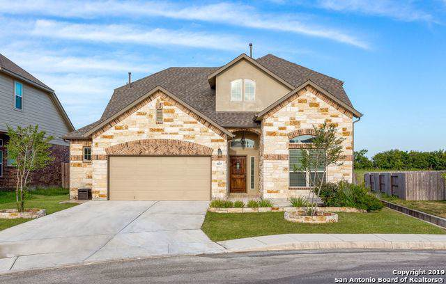 8229 Limerick Falls, San Antonio, TX 78254 (MLS #1410184) :: BHGRE HomeCity