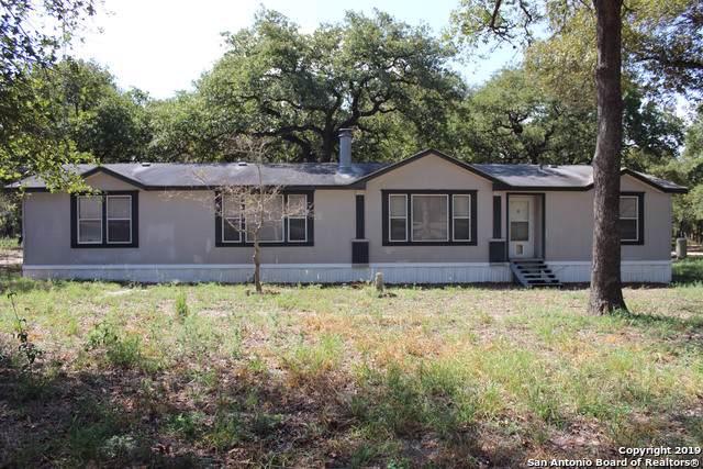 142 Deer Park Rd, La Vernia, TX 78121 (MLS #1410186) :: Santos and Sandberg
