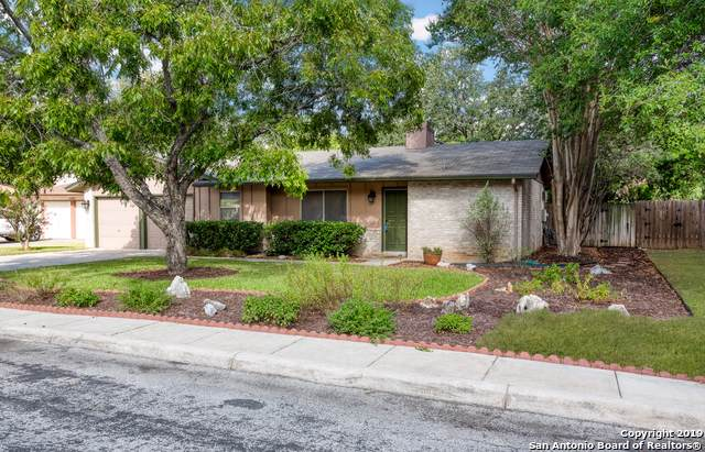 14211 Walmer St, San Antonio, TX 78247 (MLS #1410215) :: Alexis Weigand Real Estate Group