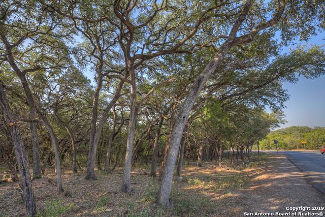 1598 River Rd, New Braunfels, TX 78132 (MLS #1410268) :: Neal & Neal Team