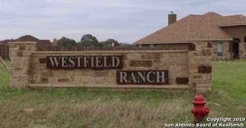160 Westfield Ranch, La Vernia, TX 78121 (MLS #1410365) :: Vivid Realty
