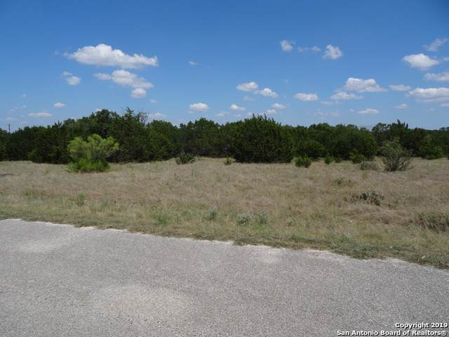 0 Cielo Springs Dr, Blanco, TX 78606 (MLS #1410377) :: Neal & Neal Team