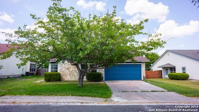 7150 Elk Trail, San Antonio, TX 78244 (MLS #1410492) :: BHGRE HomeCity