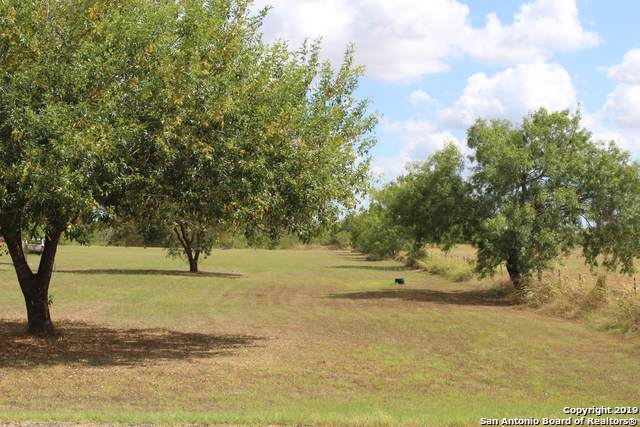 534 4th St, Floresville, TX 78114 (MLS #1410607) :: BHGRE HomeCity