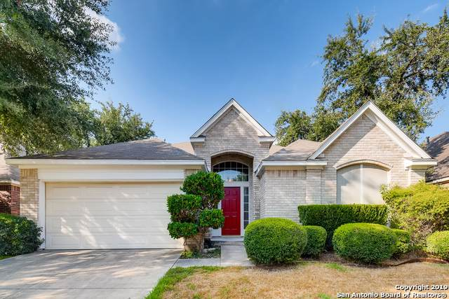 3023 NE Sable Crossing, San Antonio, TX 78232 (MLS #1410689) :: Alexis Weigand Real Estate Group