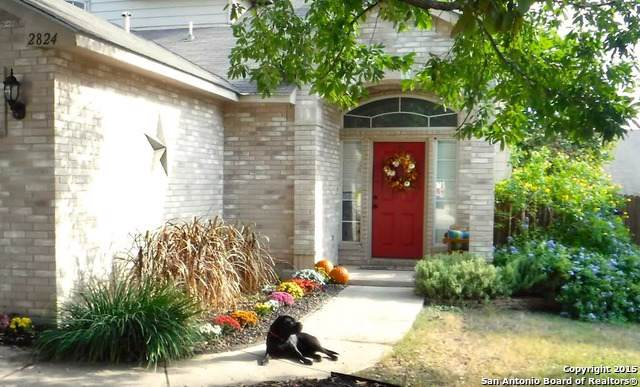 2824 Berry Way, Schertz, TX 78154 (#1410713) :: The Perry Henderson Group at Berkshire Hathaway Texas Realty