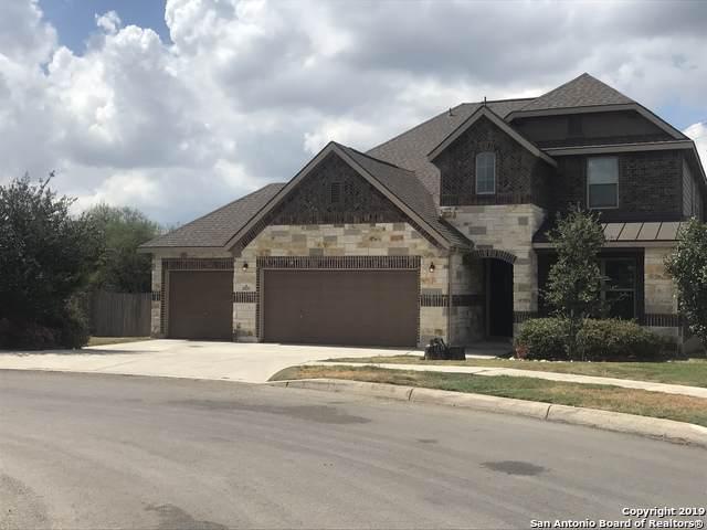 20203 Ashford Vista, San Antonio, TX 78259 (MLS #1410954) :: Tom White Group