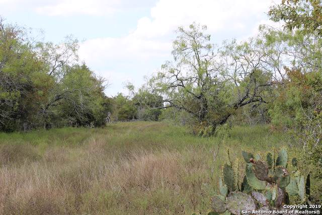 737 County Road 516, Waelder, TX 78959 (MLS #1410956) :: Legend Realty Group