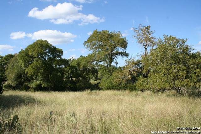 LOT 112 Diamond Ridge Drive, Boerne, TX 78006 (MLS #1410998) :: 2Halls Property Team | Berkshire Hathaway HomeServices PenFed Realty