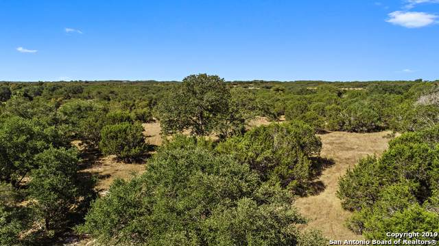 TRACT (1)  16.6 Horton-Preiss Road, Blanco, TX 78606 (MLS #1411006) :: Alexis Weigand Real Estate Group