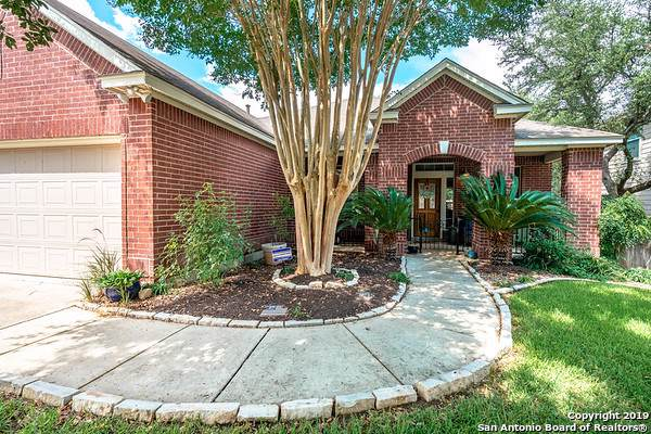 4711 Branching Bay, San Antonio, TX 78259 (MLS #1411008) :: The Gradiz Group