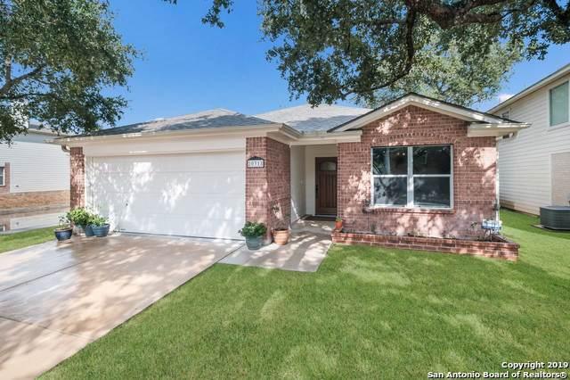20318 Blue Trinity, San Antonio, TX 78259 (MLS #1411137) :: Tom White Group