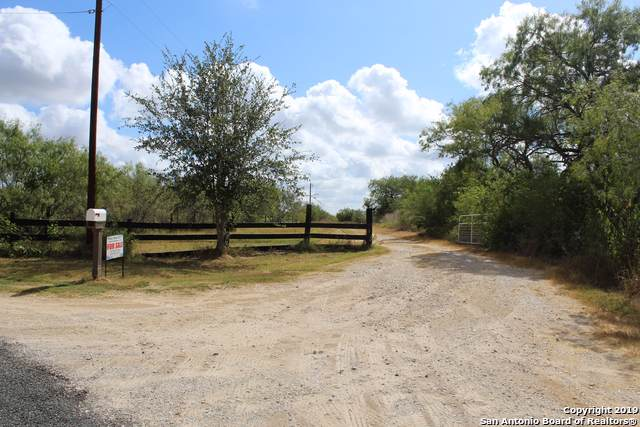 1175 County Road 114, Pleasanton, TX 78064 (MLS #1411217) :: BHGRE HomeCity