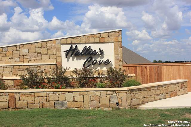 13103 Hallie Haven, Schertz, TX 78154 (MLS #1411407) :: Vivid Realty