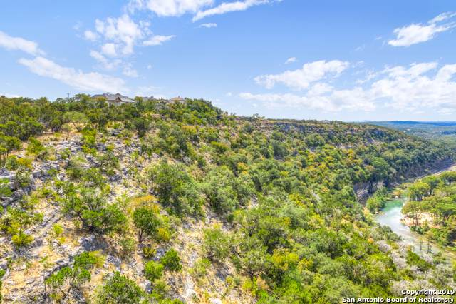 146 Ash Juniper, New Braunfels, TX 78132 (MLS #1411535) :: The Gradiz Group