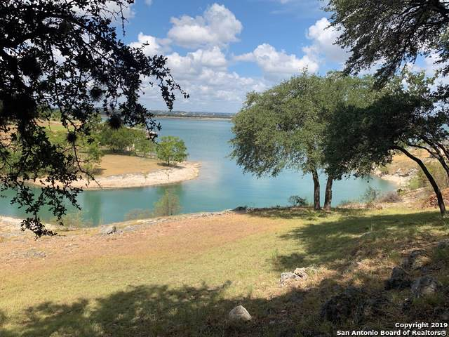 519 Scarlet Ct, Canyon Lake, TX 78133 (MLS #1411555) :: Neal & Neal Team
