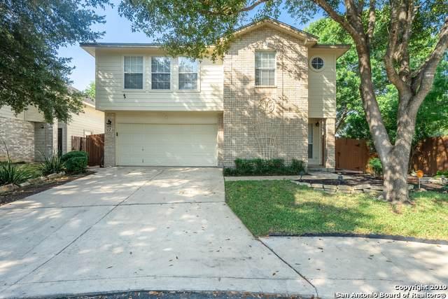 17 Pembroke Ct, San Antonio, TX 78240 (#1411607) :: The Perry Henderson Group at Berkshire Hathaway Texas Realty