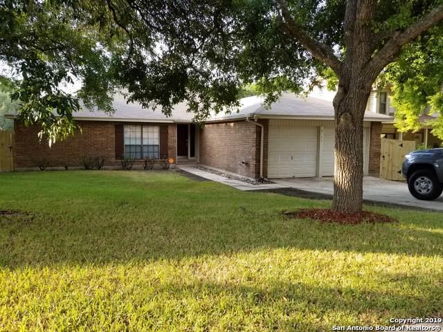 8122 Timber Grove, San Antonio, TX 78250 (MLS #1411797) :: The Gradiz Group