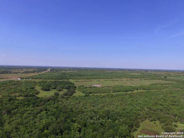 11711 New Sulphur Springs Rd, Adkins, TX 78101 (MLS #1411837) :: Alexis Weigand Real Estate Group