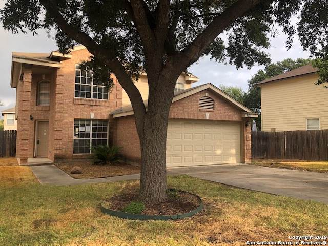5111 Stormy Dawn, San Antonio, TX 78247 (MLS #1411901) :: The Gradiz Group