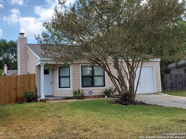 4025 Colonial Sun Dr, San Antonio, TX 78244 (MLS #1411943) :: BHGRE HomeCity