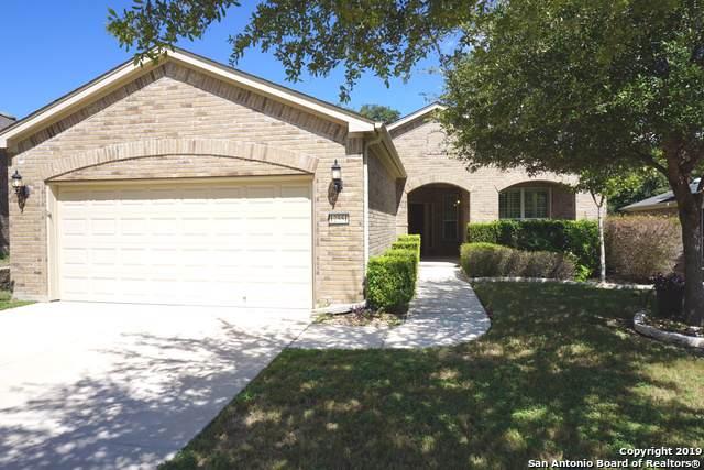 12551 Rapids Pass, San Antonio, TX 78253 (MLS #1412247) :: Reyes Signature Properties