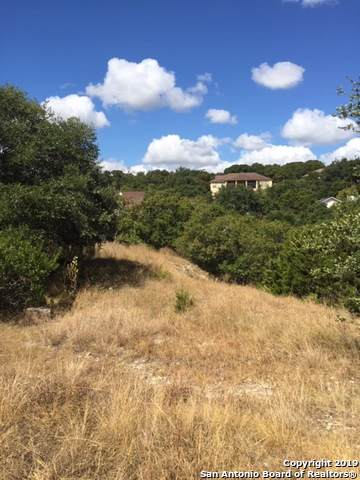 318 Gallagher, Canyon Lake, TX 78133 (MLS #1412264) :: The Mullen Group | RE/MAX Access