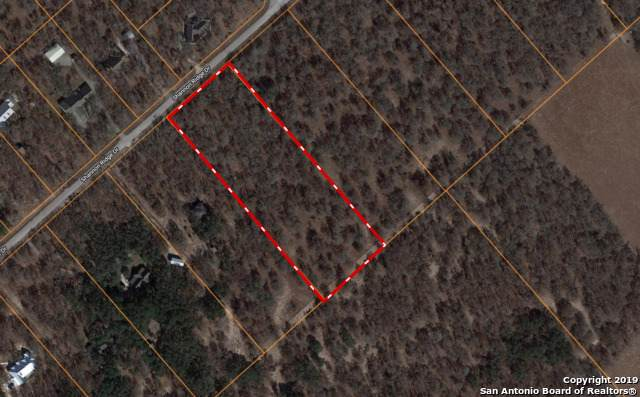 314 Shannon Ridge Dr, Floresville, TX 78114 (MLS #1412340) :: Glover Homes & Land Group