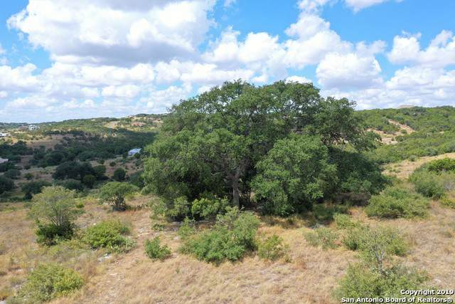 1019 Axis Trail, New Braunfels, TX 78132 (MLS #1412341) :: Reyes Signature Properties
