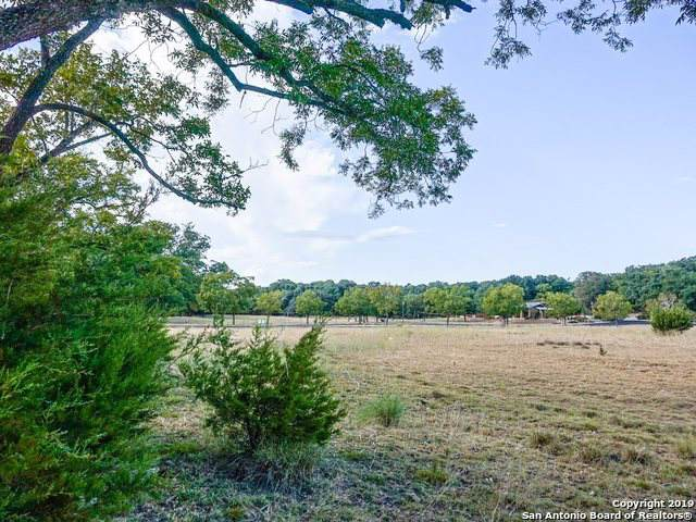 521 Rittimann Rd, Spring Branch, TX 78070 (MLS #1412369) :: Exquisite Properties, LLC