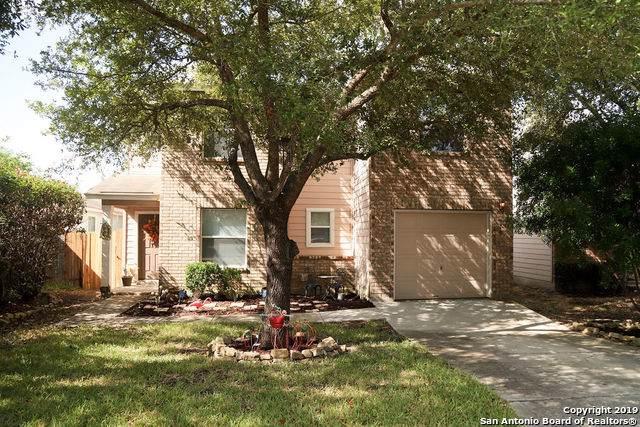 370 Copper Mtn, New Braunfels, TX 78130 (MLS #1412392) :: Exquisite Properties, LLC
