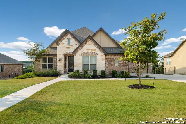 26111 Turquoise Sky, San Antonio, TX 78261 (MLS #1412503) :: Exquisite Properties, LLC