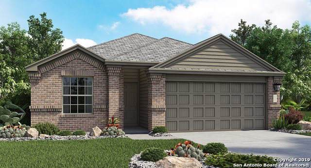 8402 Cassia Cove, Converse, TX 78109 (MLS #1412536) :: Exquisite Properties, LLC