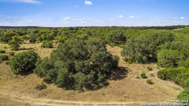 TRACT (2) 16.22 Horton Preiss Road, Blanco, TX 78606 (MLS #1412646) :: Glover Homes & Land Group
