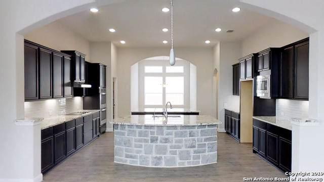 23910 Dulzura, San Antonio, TX 78261 (MLS #1412731) :: Reyes Signature Properties