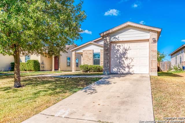 7223 Archers Coach, San Antonio, TX 78244 (MLS #1412787) :: Exquisite Properties, LLC