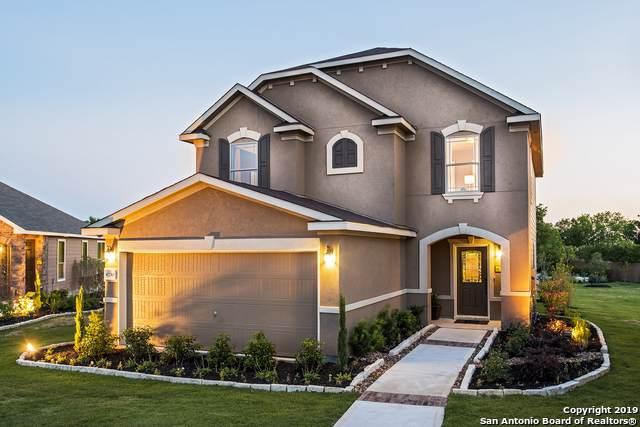 6730 Carmona Pass, San Antonio, TX 78252 (MLS #1413022) :: The Castillo Group