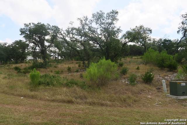 20422 Bobwhite Run, San Antonio, TX 78256 (MLS #1413024) :: Niemeyer & Associates, REALTORS®
